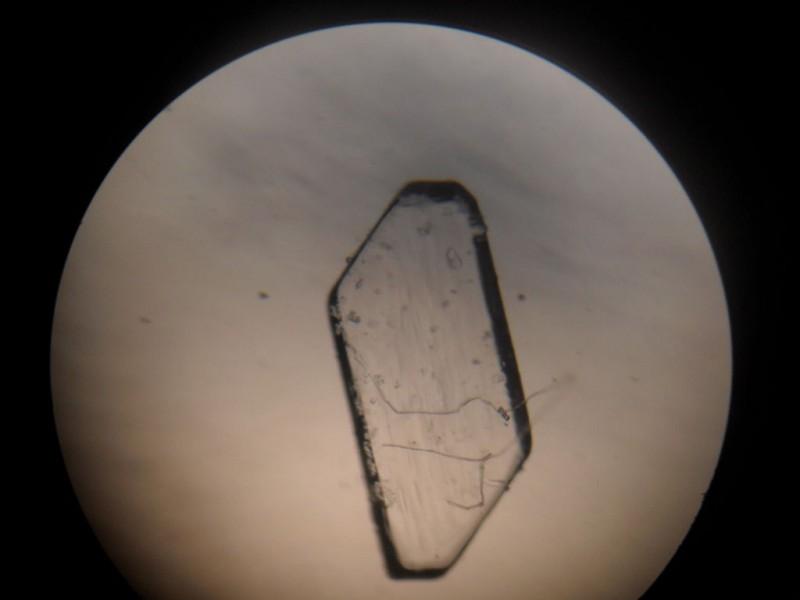 kak-vyirastit-…yie-kristallyi34