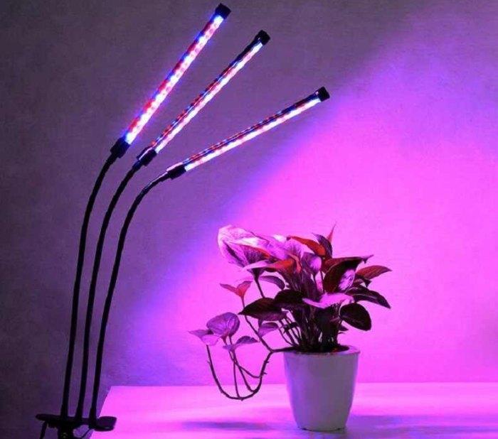 как сделать ультрафиолетовый свет