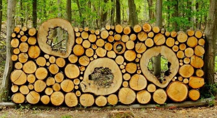 красивая укладка дров