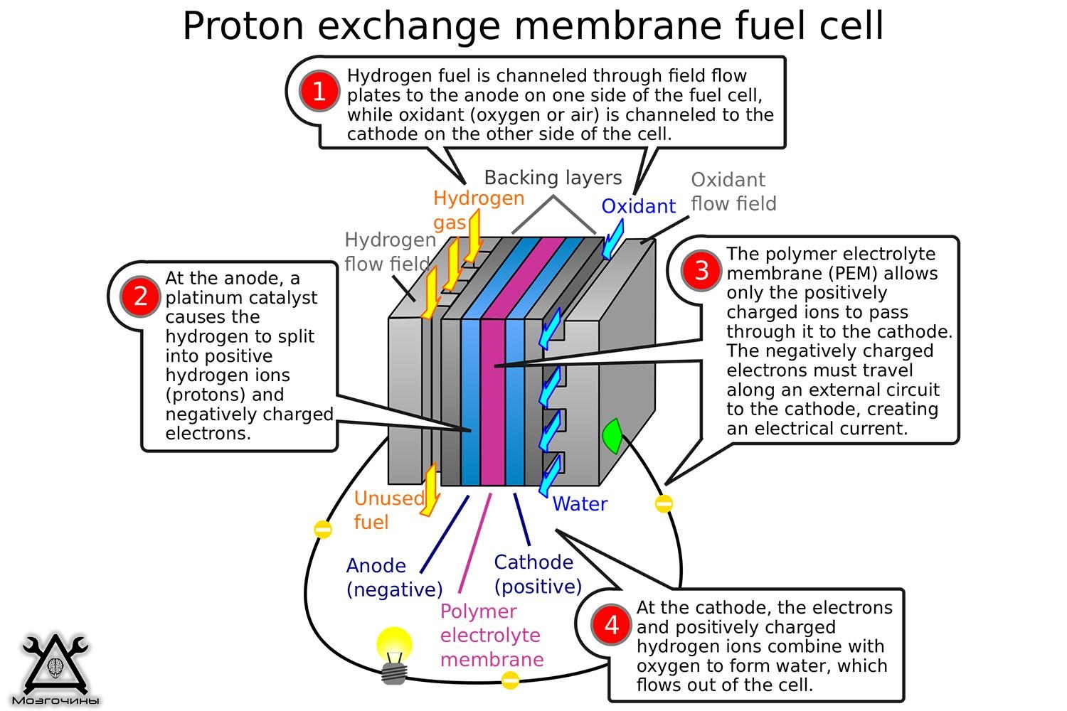 pem fuel cells Energy demands are growing and polymers play an integral role in advancing energy generation technologies currently we focus on synthesizing and characterizing polymer electrolyte membranes for fuel cells: both acidic and alkaline environments.