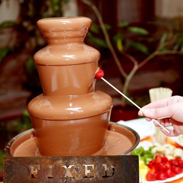 Ремонт фонтана шоколад редуктор шестерня