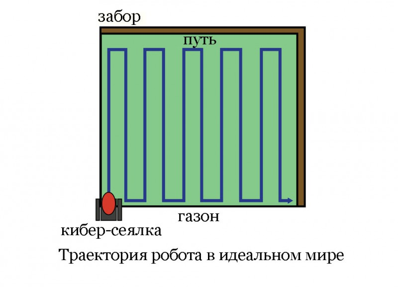 kiberseyalka-valli-na-gazone131