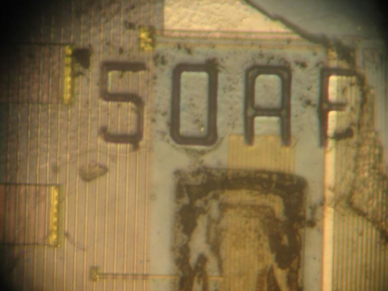 kak-sdelat-bioprinter11