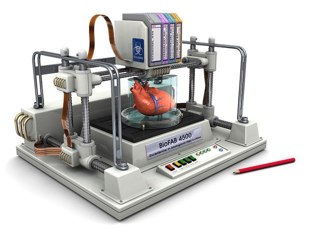 kak-sdelat-bioprinter48
