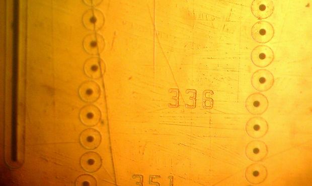 kak-sdelat-bioprinter50