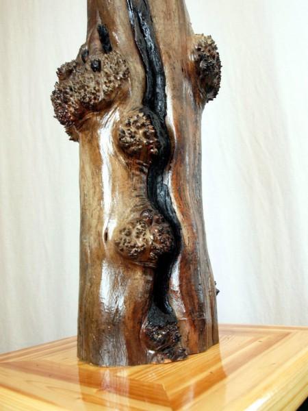 kak-sdelat-skulpturu-tvorenie-ognya62