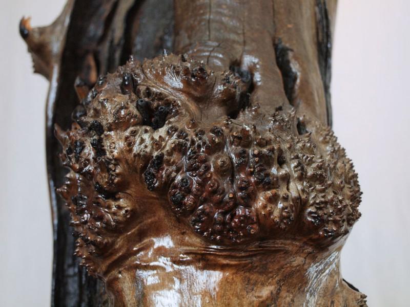 kak-sdelat-skulpturu-tvorenie-ognya63