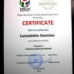 Диплом-сертификат (3)