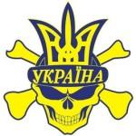 Рисунок профиля (Vova Timchuk)