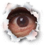 Рисунок профиля (Marco van Basten)
